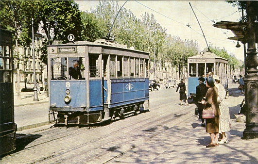 Deux trams avenue de Saint Cloud à Versailles.